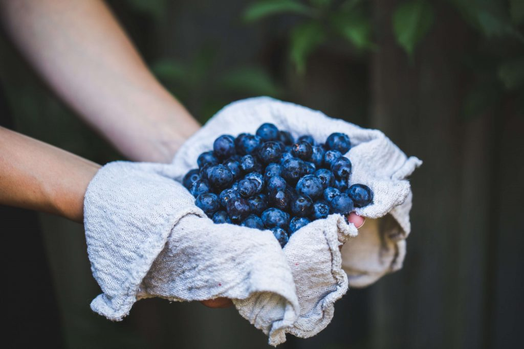 blueberries in cloth