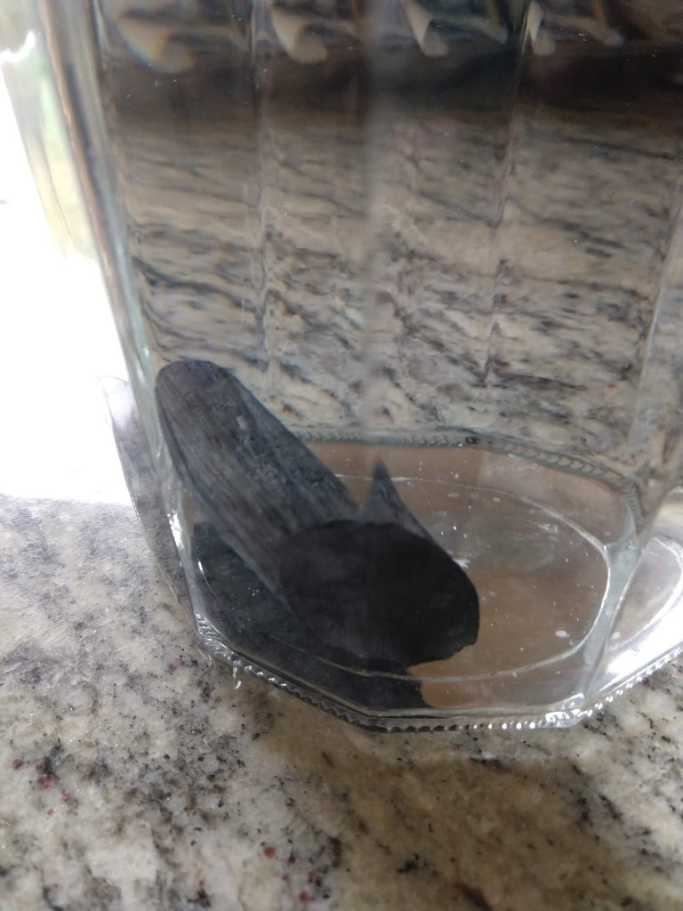 plastic-free water filter charcoal stick inside pitcher of water