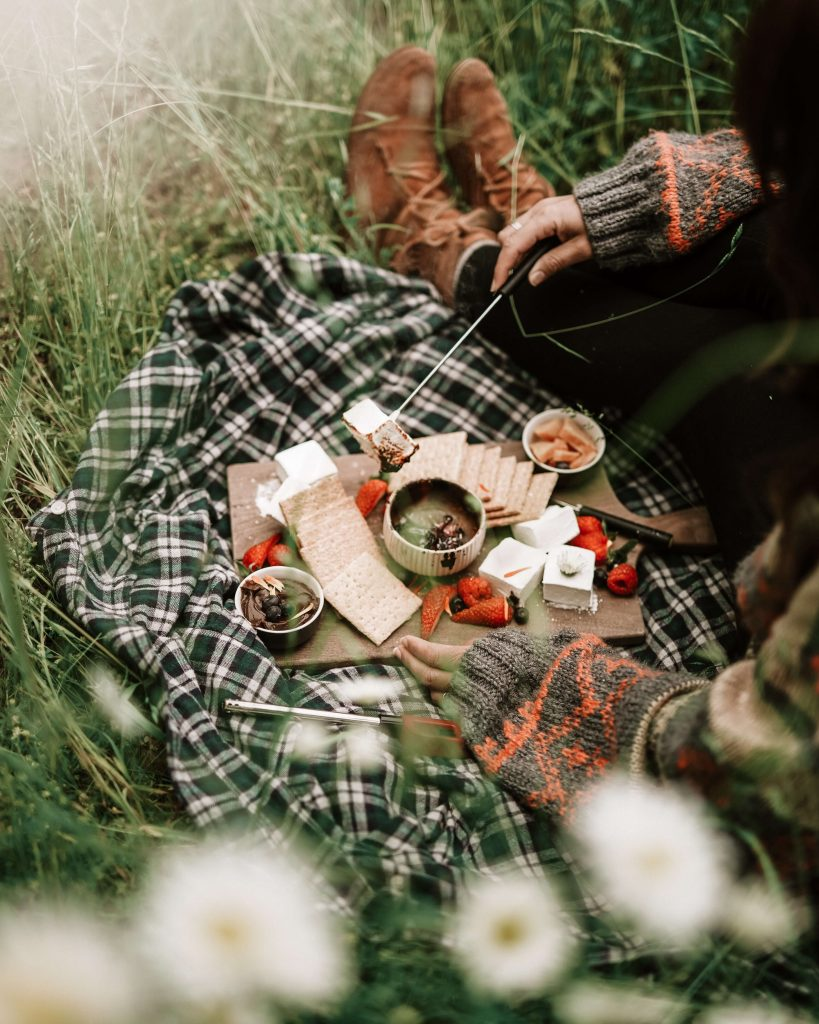 gift giving a cozy picnic on a blanket in the grass with cheese and crackers